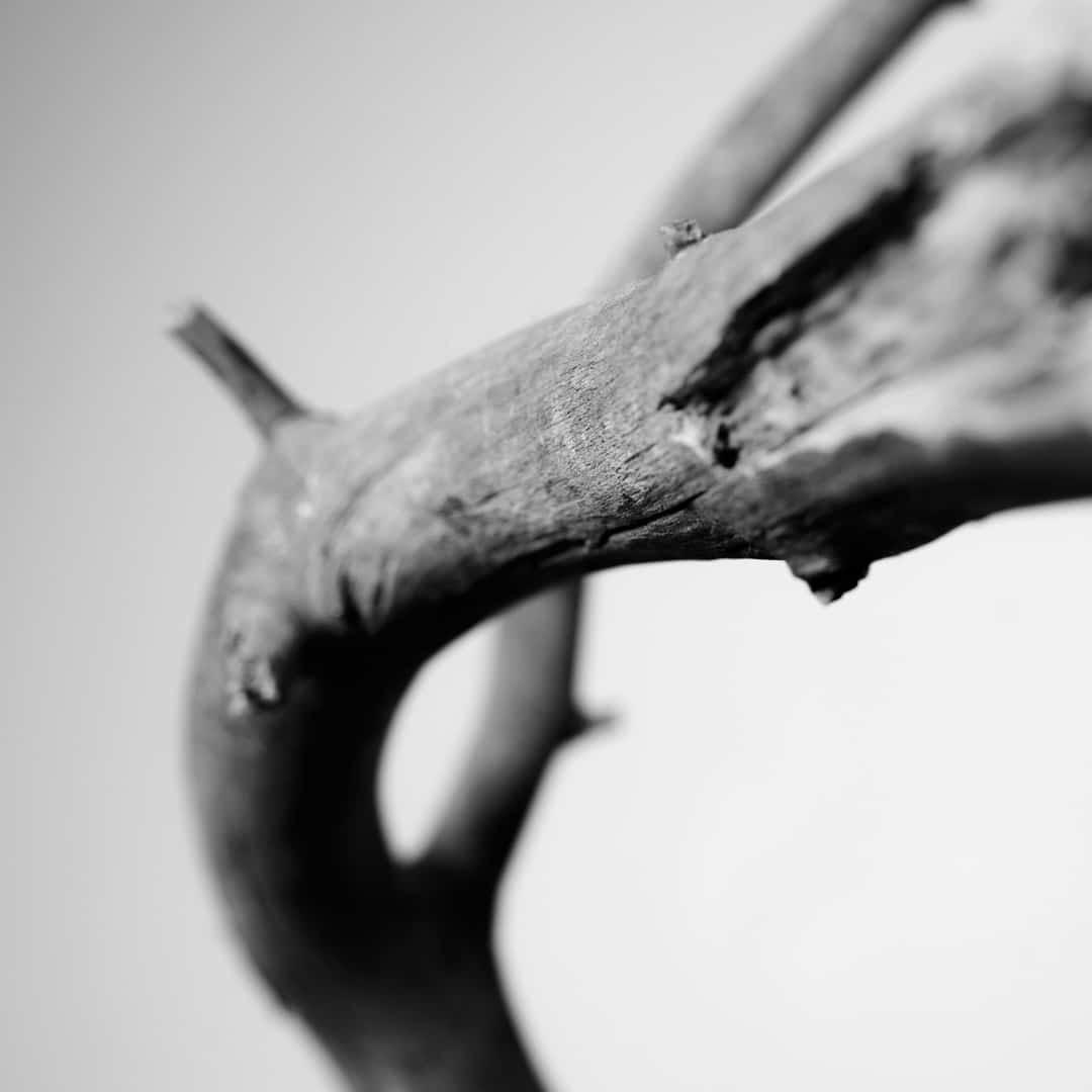 Kunstfotografie Fine Art Photography 0016