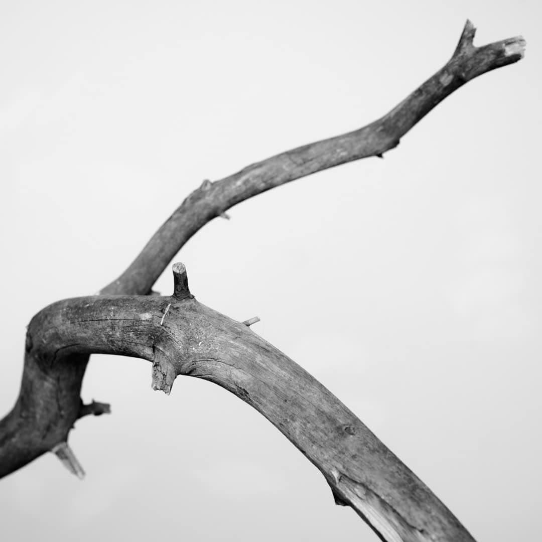 Kunstfotografie Fine Art Photography 0015